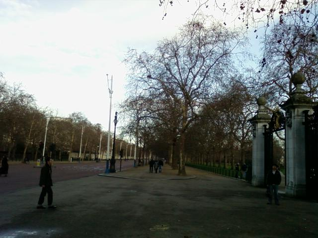 p-0444.jpg