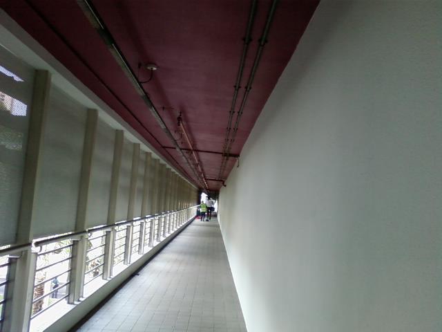 p-0329.jpg